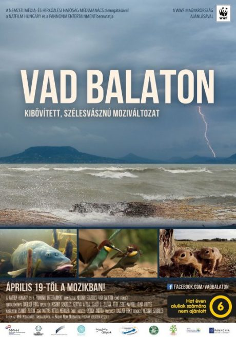 Vad-Balaton-B1-poster-WEB-JO_preview-520×743